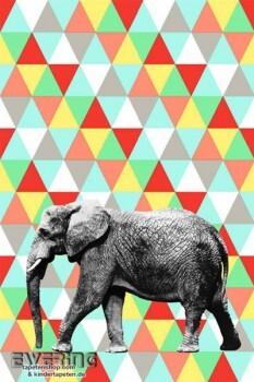 Wandbild Elefant Bunt