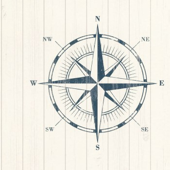 Vliestapete Weiß Kompass Blau