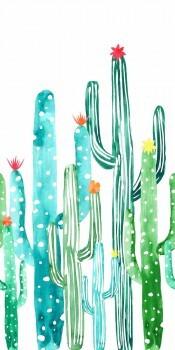 Wandbild Kaktus Grün Xl