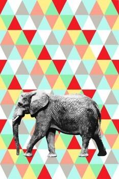 Bunt Elefant Wandbild Xl