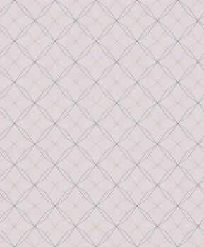 Geometrische Linien Vliestapete Rosa