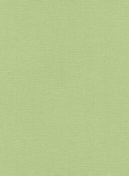 Erismann Sevilla 33-5983-07, 598307 Vliestapete grün Uni