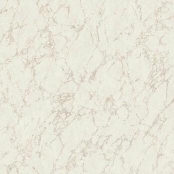Vlies Tapete 36-UTA29621135 Casadeco - Utah hell-grau gold Marmor