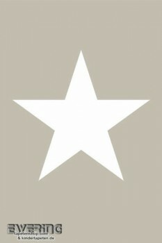 Wandbild Grau Stern