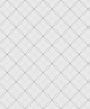 Vliestapete Schwarz/Weiß Geometrische Linien
