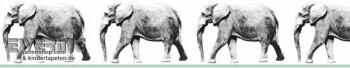 Wandbild-Borte Elefanten