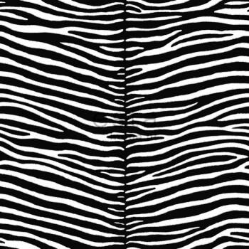 Vliestapete Zebra Schwarz Weiß