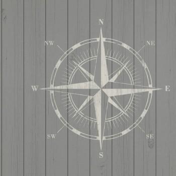 Tapete Holzoptik Kompass Taupe