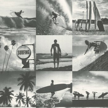 Tapete Fotos Surfer Grau