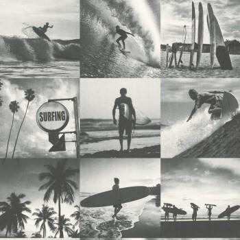 Tapete Fotos Surfer Grau